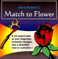 Match to Flower by Dave Powell