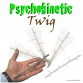 Cesaral Psychokinetic Twig by Cesar Alonso (Cesaral Magic) - Trick
